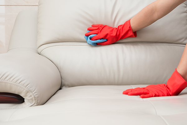 learn how to clean how your leather sofa for your home